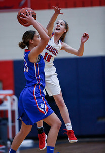Katelyn Skibinski (10) from Dundee-Crown defends Brianna Young (13) from Larkin in the first quarter of their Class 4A South Elgin Regional game on Tuesday, February 13, 2018 in South Elgin, Illinois. The Chargers defeated the Royals 55-31. John Konstantaras photo for Shaw Media