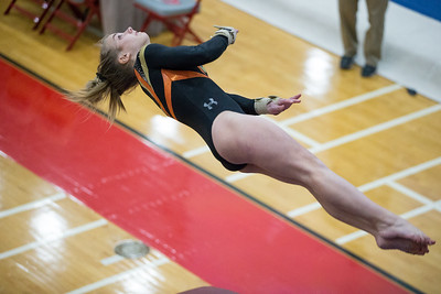Whitney Rupp for Shaw Media DeKalb's Madison Hickey performs in vault finals at the IHSA State Championships in Palatine Saturday, Feb. 17.