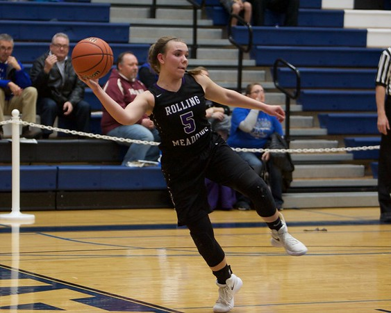 Rolling Meadows Bridget Rolla tries to save the ball from going out of bounds against Wheaton Warrenville South on Feb 20 at the Class 4A sectional semifinal in Roselle.