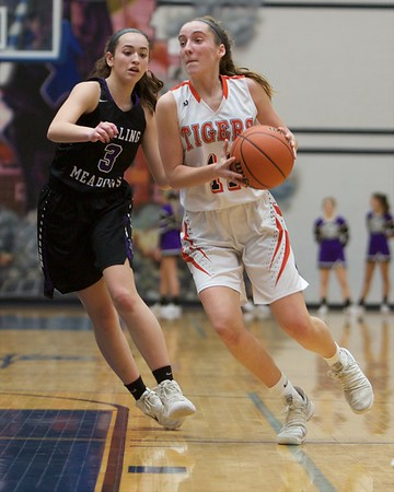 Wheaton Warrenville South's Kylie Ruggles drives past Rolling Meadows Alexa Davis on Feb 20 at the Class 4A sectional semifinal in Roselle.