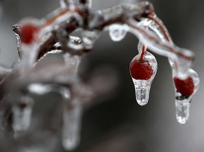 hnews_0206_Ice_Storm_