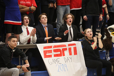 Candace H. Johnson-For Shaw Media Lakes Charlie Halberg, Joe Glassey and Jack Erwin, seniors, all 17, of Lindenhurst dressed as ESPN announcers on game day cheer on the varsity boys basketball team as they play Antioch in the third quarter at Lakes Community High School in Lake Villa. Lakes won 57-41. (2/12/19)