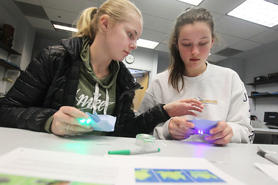 Candace H. Johnson-For Shaw Media Madison Kennedy, 13, of Hawthorn Woods and Josilyn Wadas, 12, of Wauconda help each other work on their paper circuit designs as they create light-up hopping frogs during STEM for Girls at the College of Lake County in Grayslake. STEM stands for Science, Technology, Engineering and Math. (2/23/19)