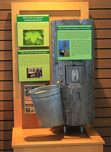 Candace H. Johnson-For Shaw Media An interactive tree display which talks about sugar maple trees and how maple syrup is made could be seen at the Welcome Center during the Lake County Forest Preserves behind-the-scenes tour of the Maple Syrup Hikes at the Ryerson Conservation Area in Riverwoods. The Maple Syrup Hikes run for three weekends in March: March 7-8, 14-15, 21-22, from 12-2:00 pm. every half-hour. Visitors must register for the event. (2/19/20)