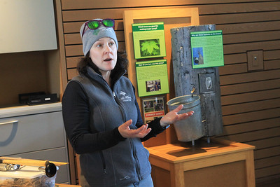 Candace H. Johnson-For Shaw Media Jen Berlinghof, environmental educator, talks about the Maple Syrup Hikes in the Welcome Center, with an interactive tree display behind her, during the Lake County Forest Preserves behind-the-scenes tour of the Maple Syrup Hikes at the Ryerson Conservation Area in Riverwoods. The Maple Syrup Hikes run for three weekends in March: March 7-8, 14-15, 21-22, from 12-2:00 pm. every half-hour. Visitors must register for the event. (2/19/20)