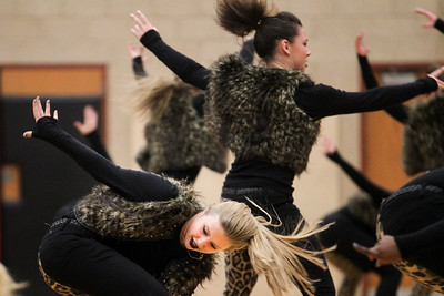Lauren M. Anderson - landerson@shawmedia.com Huntley sophomore Jessica Shoemaker participates with the pom squad during halftime of Wednesday's boys basketball game against Huntley and Crystal Lake Central. The theme for the dancers is Animal.