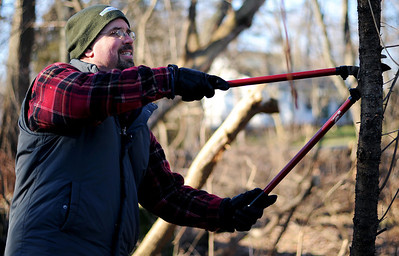 Sarah Nader - snader@shawmedia.com Jeff Kaufmann of Wodstock clears brush from Raintree Park in Woodstock on Wednesday, January 4, 2011. Kaufmann has gotten support from the City Council to start fundraising for a 9-hole disc golf course at Raintree Park. He hopes to be raise $10,000 for the project and have it completed by June.