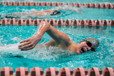 Sarah Nader - snader@shawmedia.com Woodstock North's Lian DeWane finishes in second while competing in the 500 Yard Freestyle race during Thursday's FVC dual meet against McHenry on January 19, 2012.