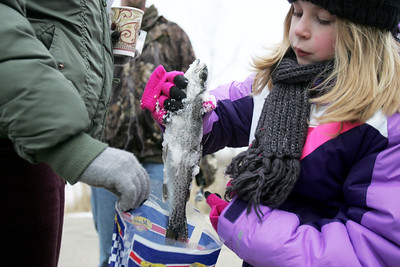 Monica Maschak - mmaschak@shawmedia.com Briana Juszczyk, 8, pulls a 12.5-inch rainbow trout she caught earlier out of a bag at the Frosty Fishing Fair held at The Hollows Conservation Area at Lake Atwood on Saturday, January 5, 2013. The event, hosted by the McHenry County Conservation District, was open to the public to learn about and participate in ice fishing.