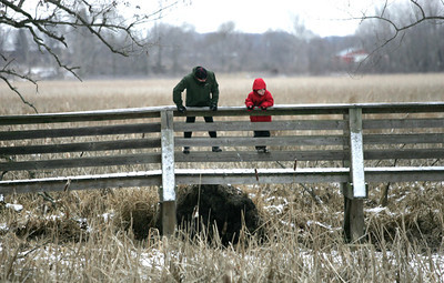 Monica Maschak - mmaschak@shawmedia.com Brian Rugg and his son Jack Rugg, 7, peer over the side of a bridge as they hike the Pike Marsh Nature Trail at Moraine Hills State Park on Thursday, December 27, 2012.  The Ruggs decided to go outdoors today after feeling cooped up at home. © Northwest Herald