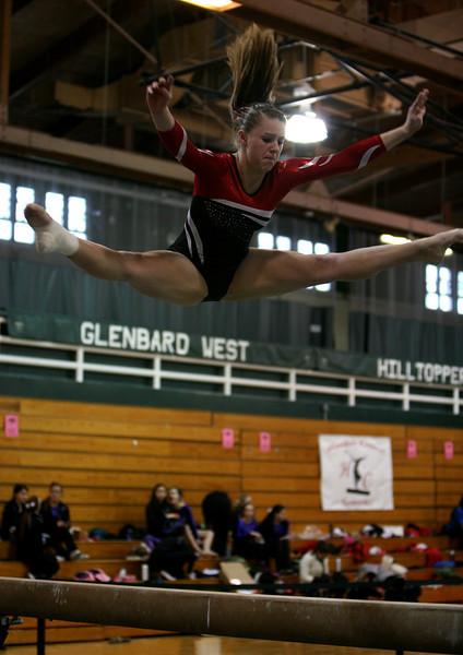 Girls gymnastics, West Suburban Silver conference