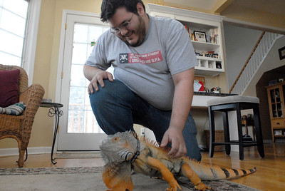 Robert Delany, of Naperville, pets his iguana, Mongo, at his home on Tuesday, Jan. 22, 2013. Delany is a member of the Windy City Reptiles Club, which will have a booth during the second annual Repticon at the Kane County Fairgrounds on Jan. 26 and 27. Matthew Piechalak— mpiechalak@shawmedia.com.