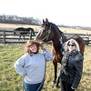 "Gail Vacca (left), president and founder of the Illinois Equine Humane Center, and Cynthia Cherry-Schif with Silver Option, a thoroughbred they call ""Lulu"" who was saved from slaughter by Vacca. Lulu's foal, Magna Fortuna, is co-owned by Cherry-Schif and was sired by one of Kentucky's great stallions.(Sandy Bressner photo)"