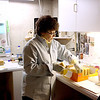 Sue Czer makes Bay Rum soap in the basement of her Sugar Grove home, where she runs her Prairie Soaps & Salts business.