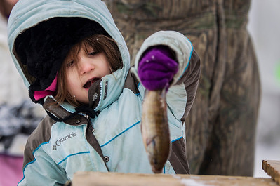 Kyle Grillot - kgrillot@shawmedia.com   Connie Fallon, 4, of Freeport picks up her fish after having it measured during the Wonder Lake Sportsman & Conservation Club's 28th Annual Ice Fishing Derby on Wonder Lake Sunday January 26, 2014. The catch and release derby costs $10 per person above the age of 12 and prizes are awarded for the biggest fish of different varieties. All proceeds go towards the conservation of the lake.