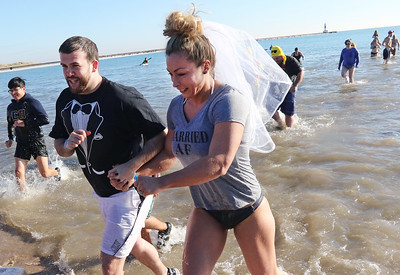 LCJ_0105_PolarBear_Plunge_D_COVER