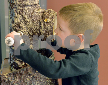 lnews-Gallery-NaturePlay04-0118-DGR