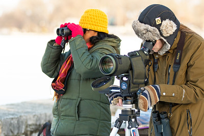 Whitney Rupp for Shaw Media Anandhi Ramalingam of Vernon Hills, left, and Lisa Maier of Holiday Hills watch for eagles at the Stratton Lock and Dam in McHenry Saturday, Jan. 20.