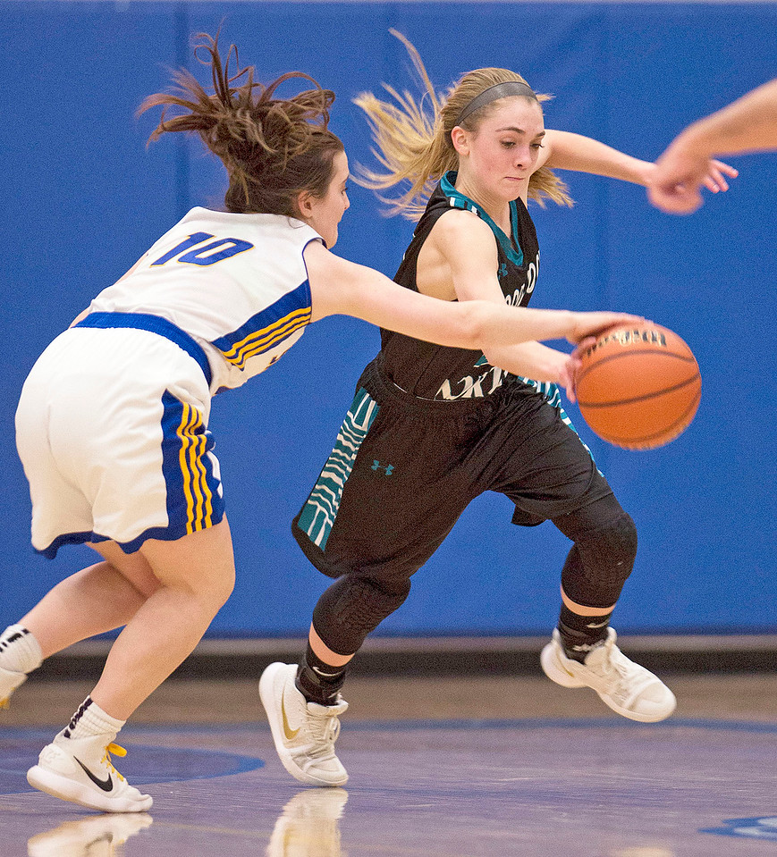 Sarah Metze (10) from Johnsburg and Kaitlyn Ford (21) from Woodstock North scramble for a ball during the second quarter of their game at Johnsburg High School on Monday January 22, 2018 in Johnsburg, Illinois. John Konstantaras photo for Shaw Media
