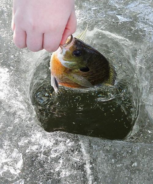 LCJ_0201 Wau_fishing_derby11