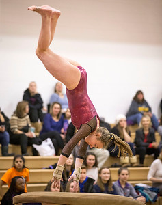 Prairie Ridge's Ciara Ryan competes on the vault during their gymnastics regional competition at Hersey High School on Monday, January 29, 2018 in Arlington Heights, Illinois. John Konstantaras photo for Shaw Media