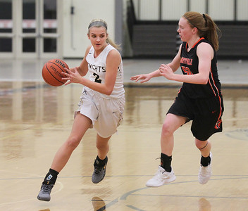 Candace H. Johnson-For Shaw Media Grayslake North's Jordyn Gerdes drives on Libertyville's Lydia Crow in the first quarter at Grayslake North High School. Libertyville won 62-41. (1/12/19)