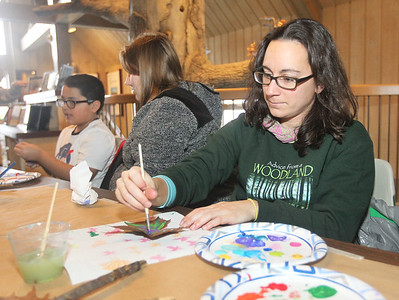 Candace H. Johnson-For Shaw Media Christine Kustra, of McHenry paints on a sycamore leaf in the Visitor Center during WinterFest at the Volo Bog State Natural Area on Brandenburg Road in Ingleside. (1/13/19)