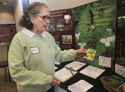 Candace H. Johnson-For Shaw Media Carol Rice, of Barrington, a member of the Wildflower Preservation and Propagation Committee, an educational outreach program, talks about the Partridge Pea seeds the committee was giving out to visitors during the 3rd Annual Round Lake Area Garden Club Seed Expo at the Round Lake Beach Cultural & Civic Center. (1/26/19)