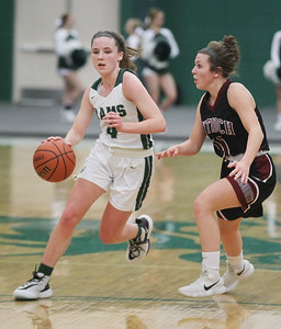 Candace H. Johnson-For Shaw Media Grayslake Central's Mary Katherine Drevliine drives to the basket against Antioch's Hailey Webb in the second quarter at Grayslake Central High School. Grayslake Central won 60-26. (1/13/20)