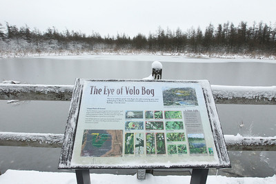 Candace H. Johnson-For Shaw Media Visitors can stop at The Eye of the Volo Bog as they take a walk along the boardwalk in the Volo Bog during WinterFest at the Volo Bog State Natural Area in Ingleside. (1/12/20)