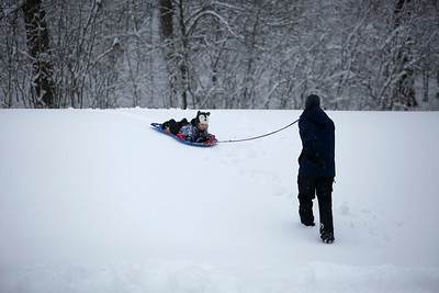 Scott Watson pulls his son Connor Watson, 2, of Fox River Grove, Ill., on a sled at Picnic Grove Park, in Fox River Grove, Ill., on Sunday, Jan. 31, 2021.