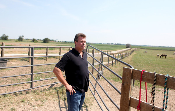 Robert Sauber looks onto a pasture on his South Elgin property where he boards Scaredy Cat, a bull owned by Denny and Andrea Hawks of Elburn. Scaredy Cat will be competing in the Professional Championship Bull Riding event at the Kane County Fairgrounds Friday.