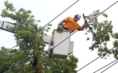 H. Rick Bamman -hbamman@shawmedia.com An Asplundh Tree Expert Company crew member removes branches from power lines along Terra Cotta Rd. south of East Terra Cotta Ave.