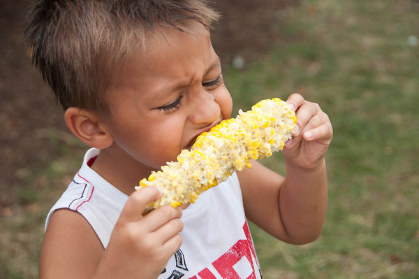 4-year-old Christopher Whetstone Jr., from Aurora, finishes off his dad's corn at the Corn Boil in Sugar Grove Sunday afternoon.