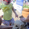 Avery Schaller, 2, of Batavia, pets Lily a 5-month-old Golden Retriever belonging to Cindy McKay of Aurora at the Windmill City Festival Pet Parade in downtown Batavia on Saturday. While most of the pets entered were dogs, other animals came to the parade, including a bearded dragon, two snakes, and a parrot.