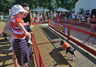 DuPage County Fair opens