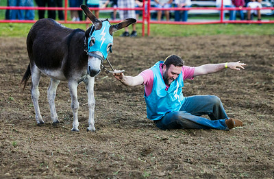 Hnews_adv_Harvard_Rodeo_18.jpg