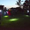 knews_sat_711_fireflies2