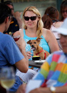 hnews_thu0723_Dining_Dogs_02