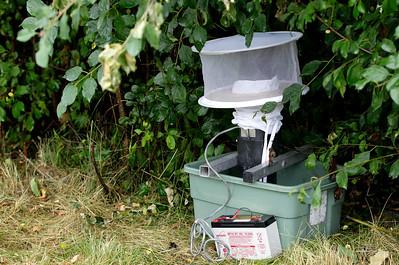 hnews_adv_mosquito_population2