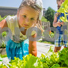 dnews_1_0712_JrGardenExplorers