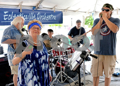 Beautiful weather, fun and food brought people out to the Taste Of Westmont over the weekend.