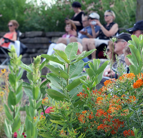 The crowd watches amongst the perennial flowers as The Victory Travelers perform during a summer concert at RiverPark in Geneva July 9.