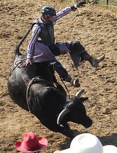 LCJ_0720_Wauconda_RodeoD
