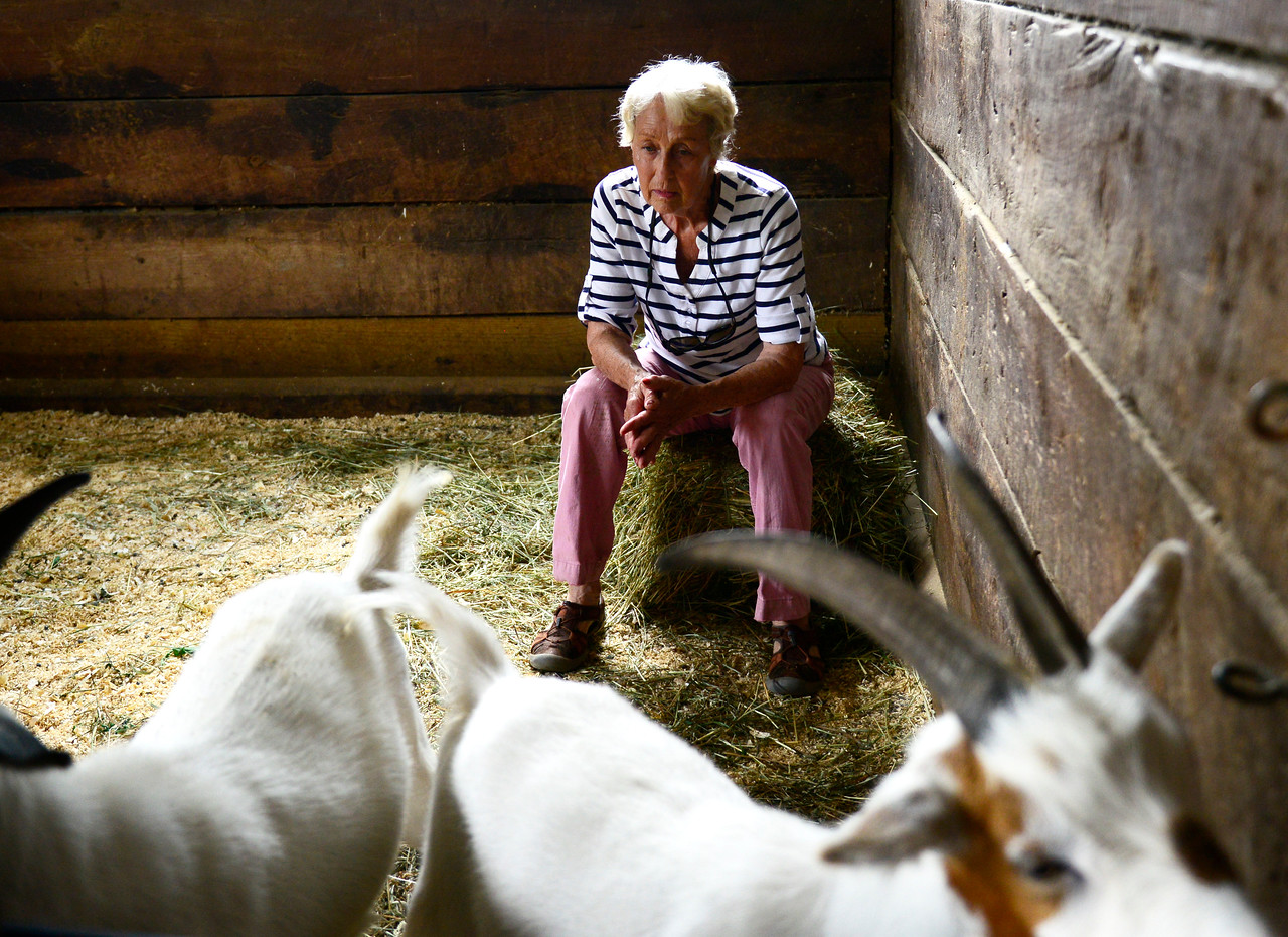 Kayla Wolf - for Shaw Media President and founder of Hooved Animals Rescue and Protection Donna Ewing sits Wednesday, July 19, 2017, with two goats she and her crew rescued over the weekend. The farm they were rescued from flooded and had to be evacuated.