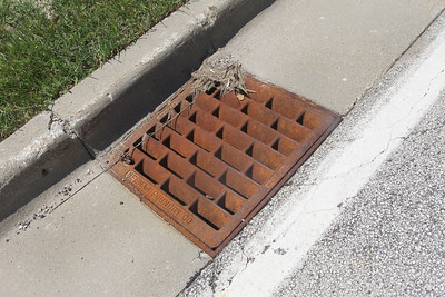 Candace H. Johnson-For Shaw Media A storm drain with a catch basin of water was treated a week ago with a larvicide pellet to kill mosquito larvae by the Lake County Health Department on the property of the Lake County Central Permit Facility in Libertyville.(7/2/18)