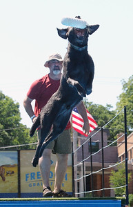 Candace H. Johnson-For Shaw Media Gene Yatchyshyn, of Eagle River, Alaska watches his dog, Ruger, jump high to catch a toy before landing in the water during the DockDogs Big Air Wave canine aquatics competition at Dog Days of Summer on Church Street in Libertyville. (7/6/18)