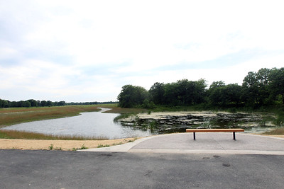Candace H. Johnson-For Shaw Media The Pond at the Fort Sheridan Forest Preserve.The pond was expanded to improve the visitor experience.(7/9/18)