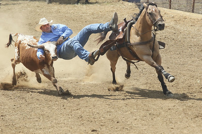 Candace H. Johnson-For Shaw Media Cody Mousseau, of Aylmer, Ontario gets ready to hook one of his arms onto one of the horns of a steer as he competes in Steer Wrestling during the 55th Annual Wauconda Rodeo at the Golden Oaks Equestrian Center in Wauconda.The event was sponsored by the Wauconda Chamber of Commerce. (7/15/18)