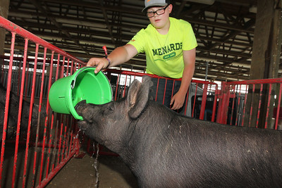 Candace H. Johnson-For Shaw Media Jesse Armbrust, 13, of Capron gives one of his pigs a drink of water after arriving at the Lake County Fair at the Lake County Fairgrounds in Grayslake. The Lake County Fair ends on Sunday, July 29th.(7/24/18)